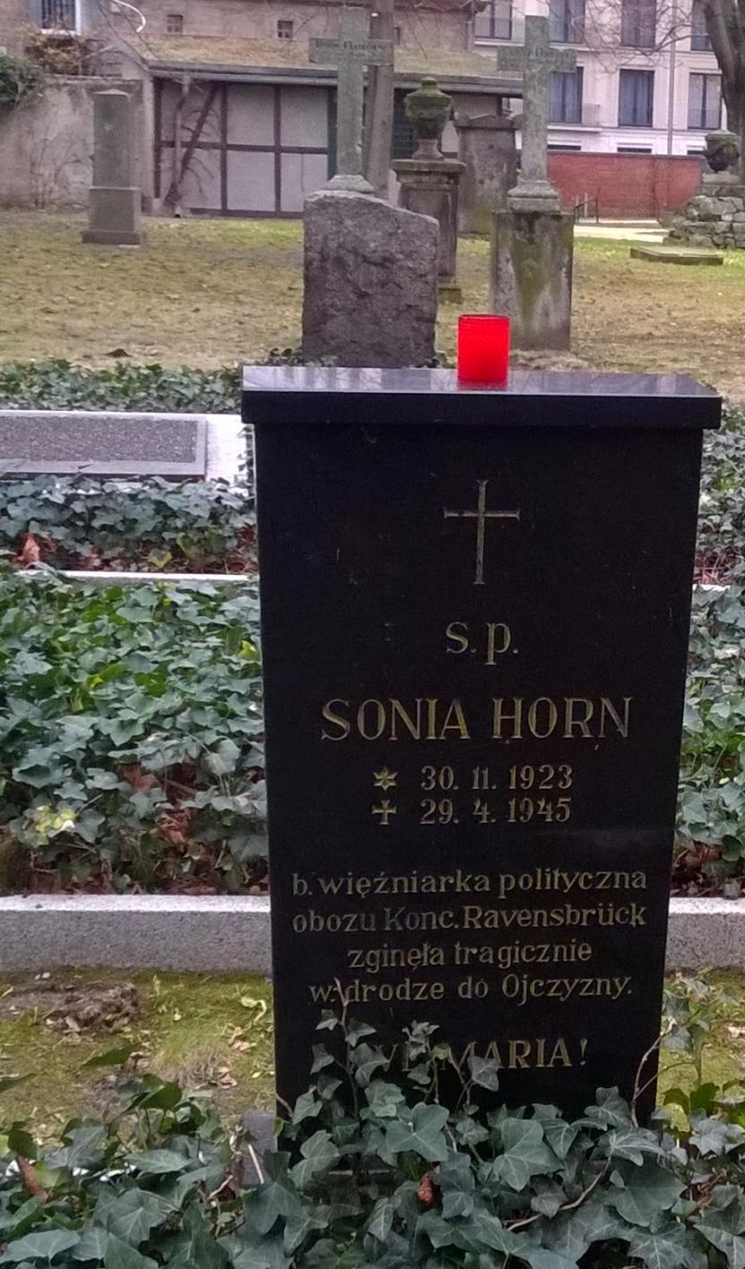sonia-11